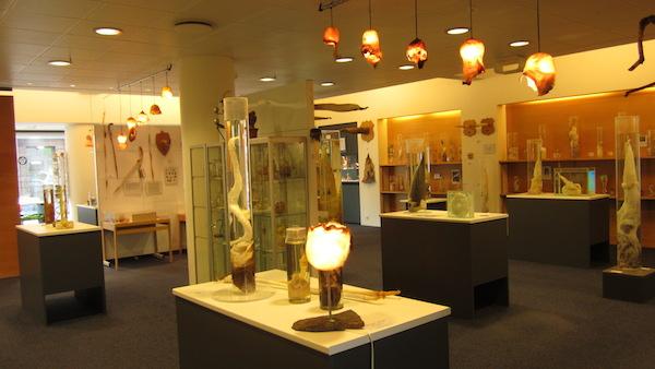 Icelandic_Phallological_Museum,_Reykjavík